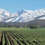 Weinreise nach Mendoza
