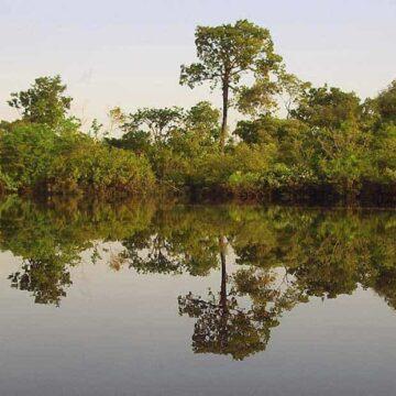 Amazonaserlebnis