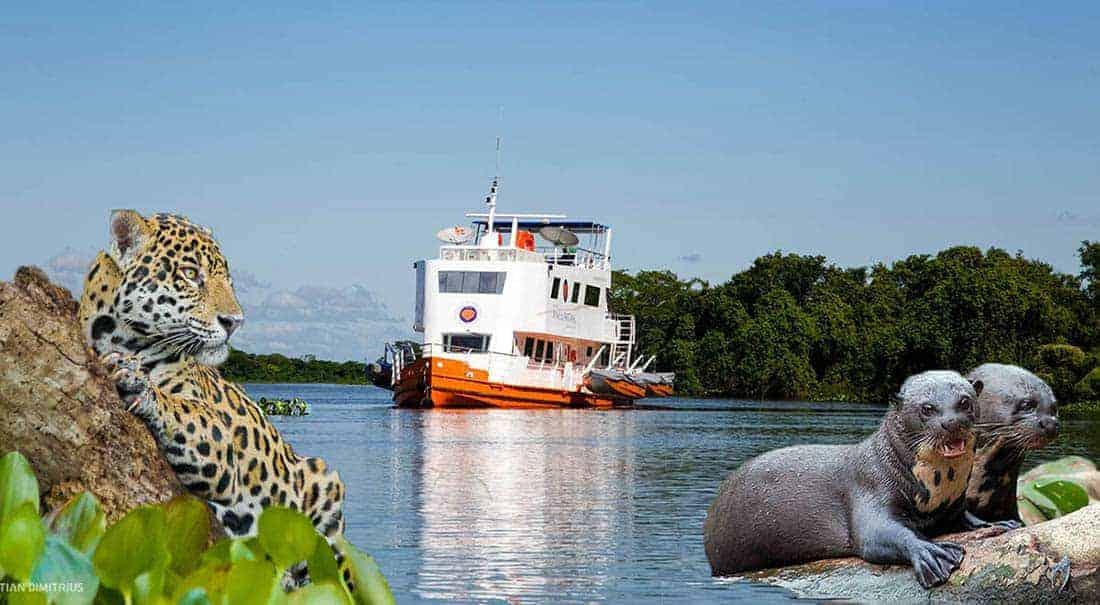 Pantanal Jaguar Kreuzfahrt