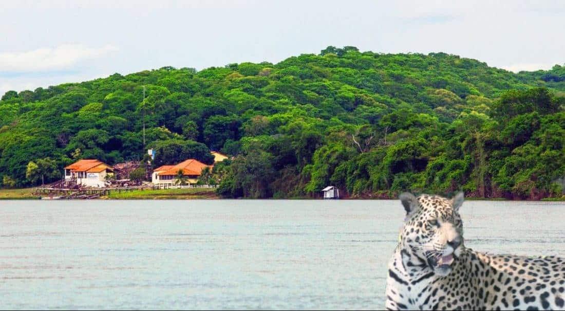 Jaguar Hotel Baiazinha