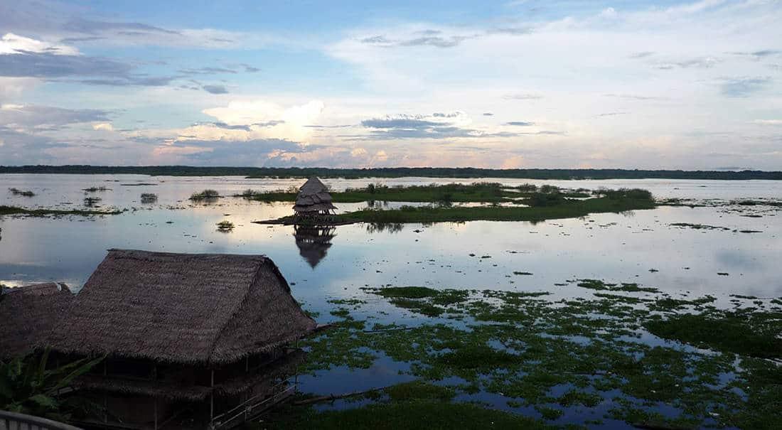 Info Amazonas in Perú